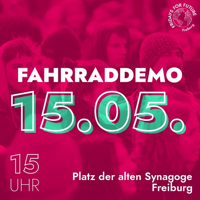 Fridays for Future Demonstration in Freiburg am 15. Mai 2020